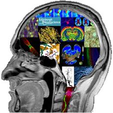 Neuroscience Day logo