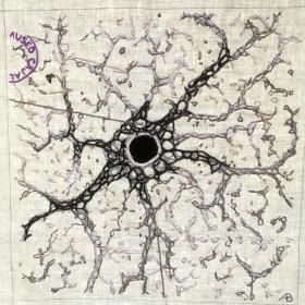 Embroidery of a Cajal illustration of an astrocyte