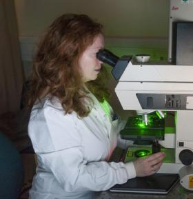 Photograph of researcher using a microscope